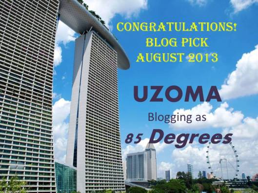 Uzoma_Blog Pick_Aug 2013